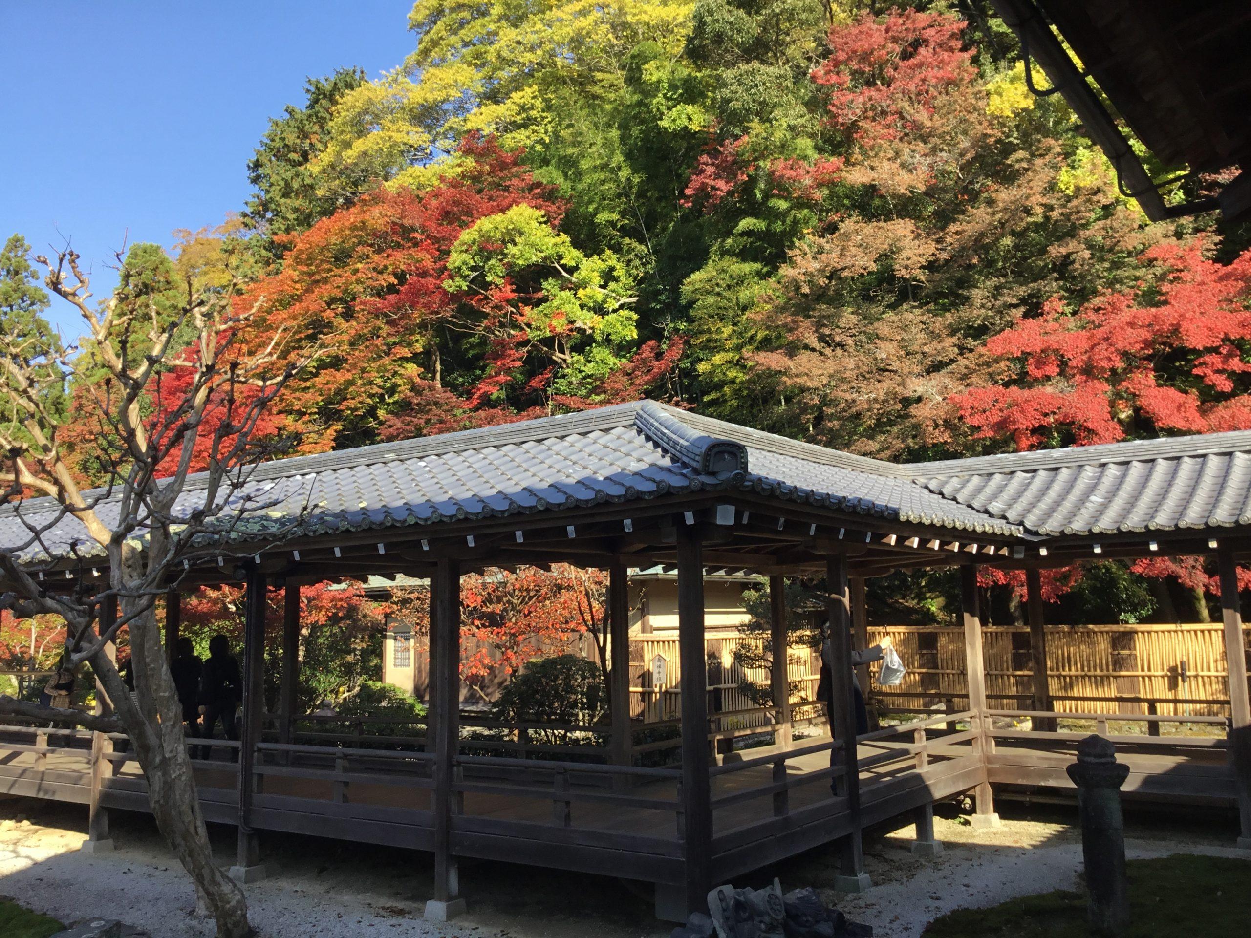 Kyoto-Silver