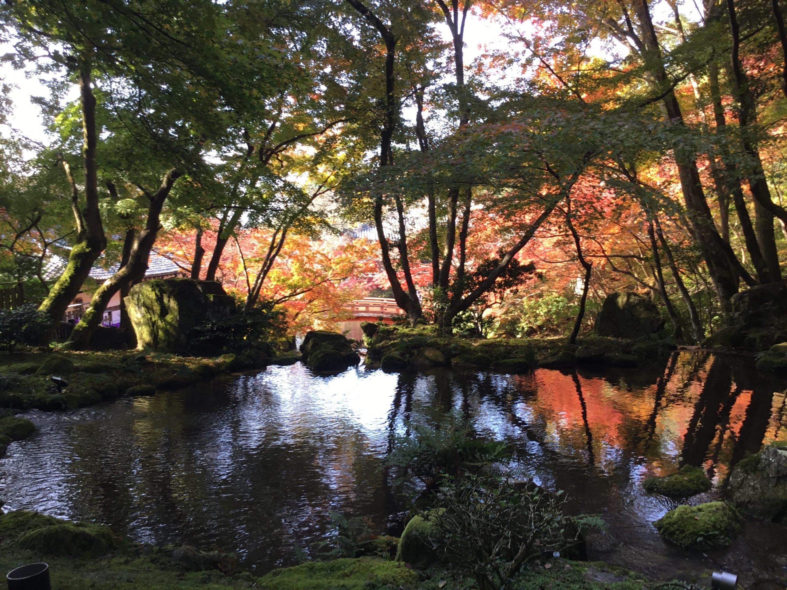京都紅葉巡り・醍醐寺