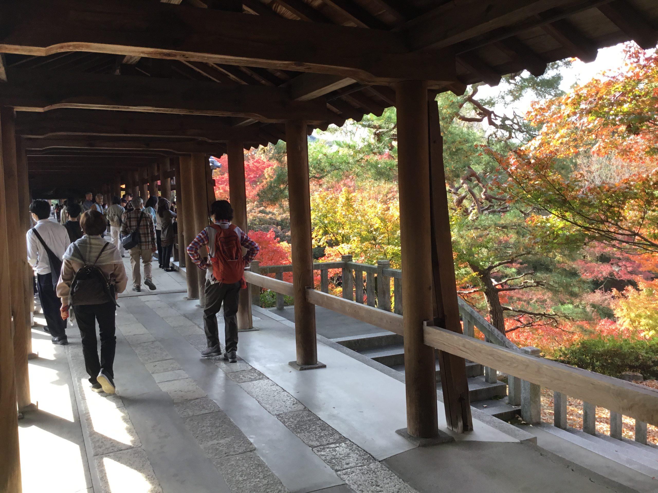 京都紅葉巡り・東福寺