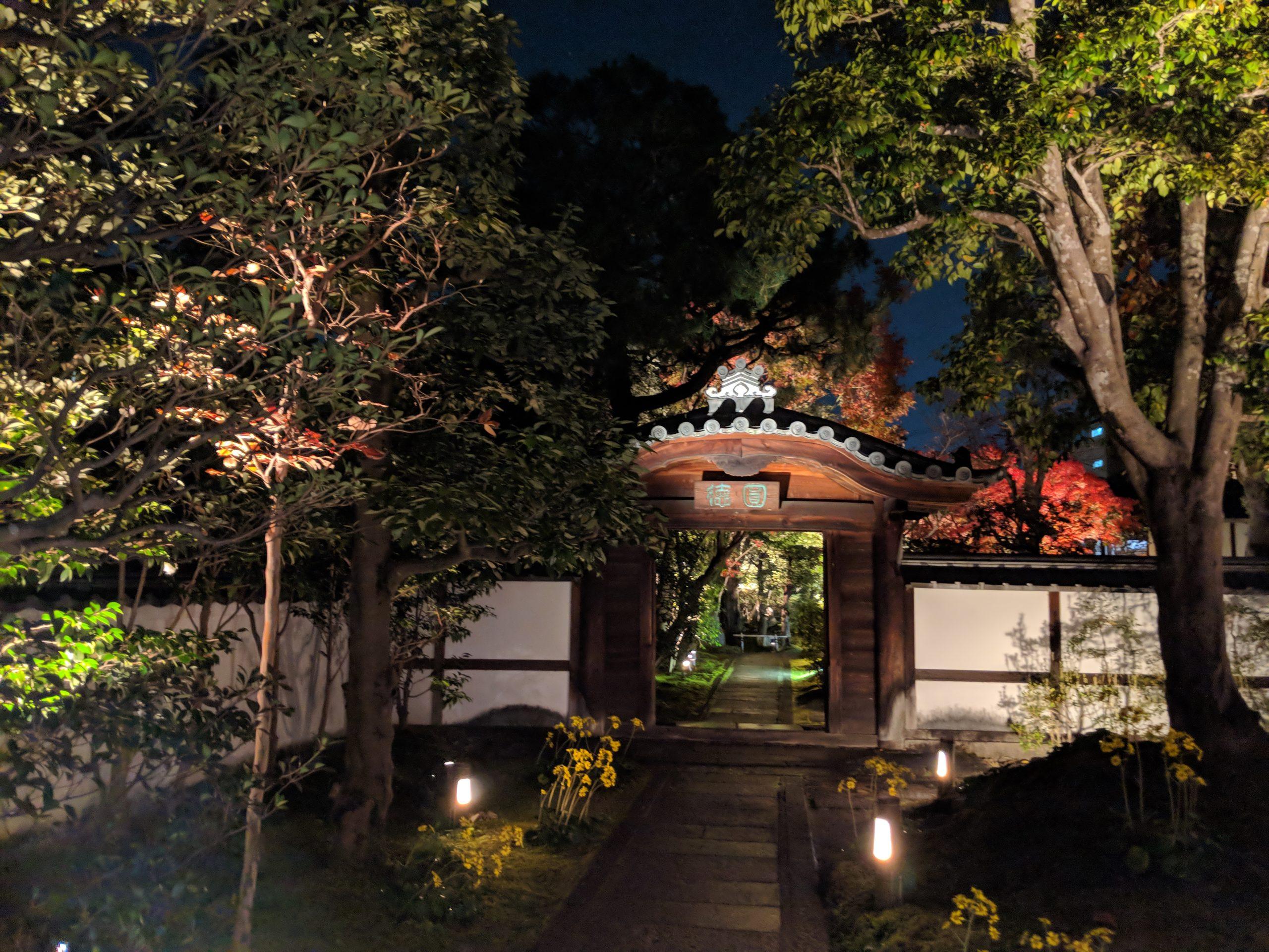 京都紅葉巡り・夜の圓徳院
